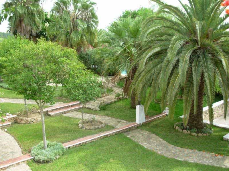 Casaviva Ibiza Inmobiliaria: Large plot of land with house in Santa Gertrudis.